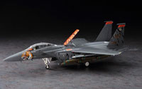 Hasegawa F-15E Strike Eagle Tiger Meet 2005 Limited Edition 1/48 (нажмите для увеличения)